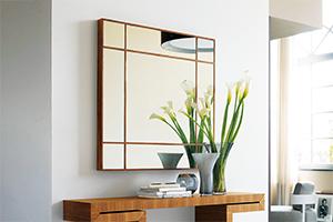 Mirror & Coat hanger